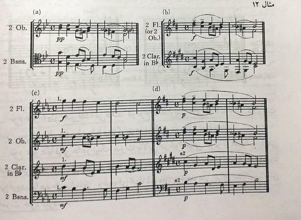 ارکستر بادی چوبی2