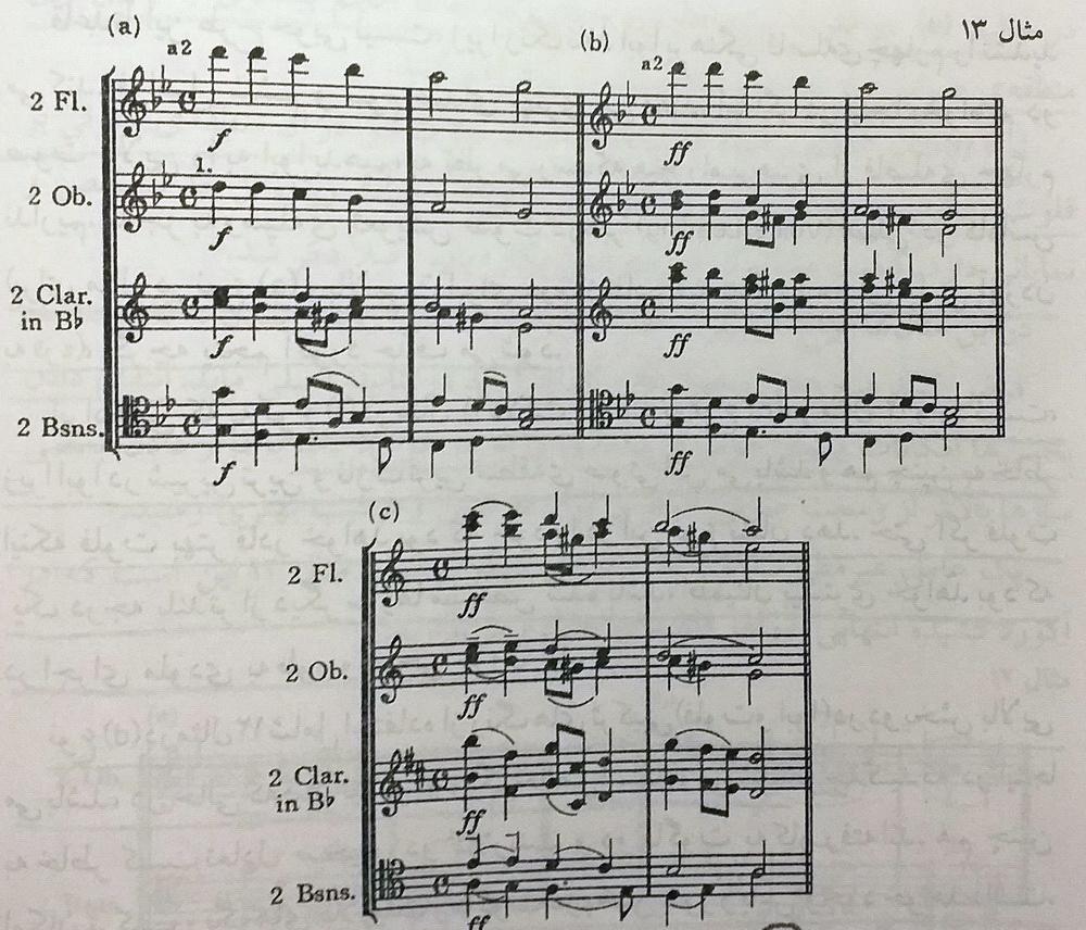 ارکستر بادی چوبی3