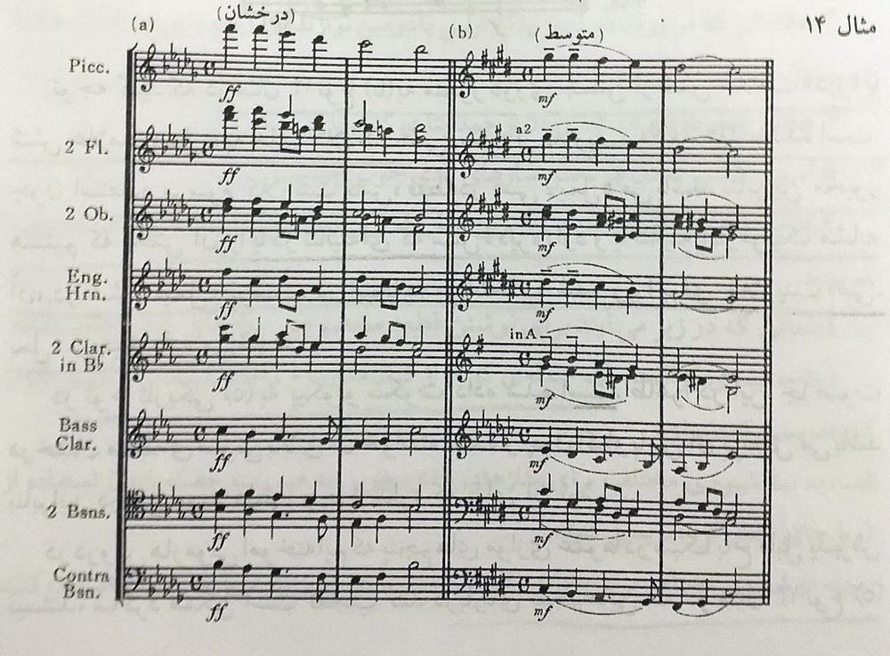 ارکستر بادی چوبی4