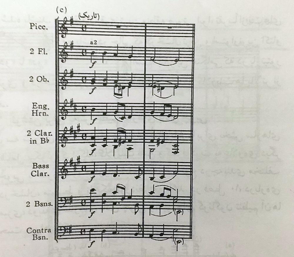 ارکستر بادی چوبی5