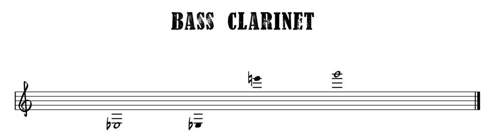 11.Bass Clarinet