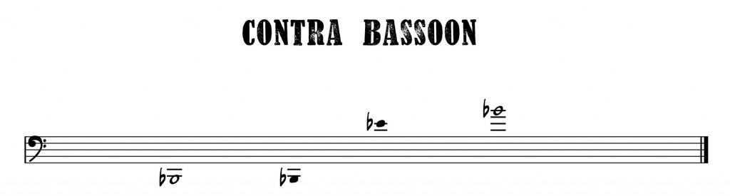 12.Contra Bassoon