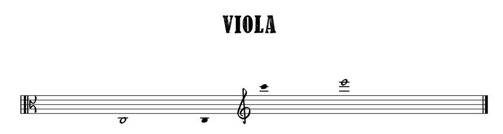 2.Viola