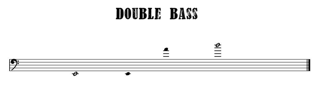 4.Double Bass